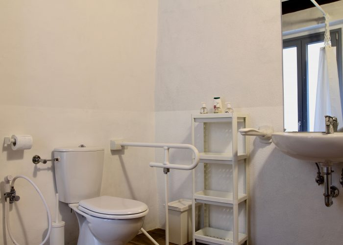 It shows a side of the bathroom: the accessible toilet and sink with handles and grab bar. When needed the toilet has an external assistance that can perform the same functions increasing the seating height. There is also a little shower for the personal hygiene.